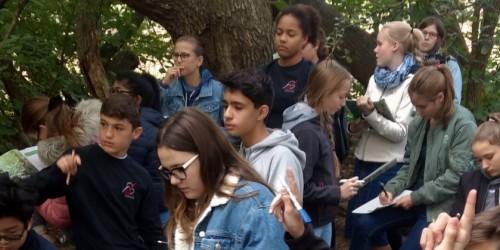 Wie geht's denn eigentlich dem Schwalbach im Taunus? Klasse 7b auf Science Tour im Regionalpark